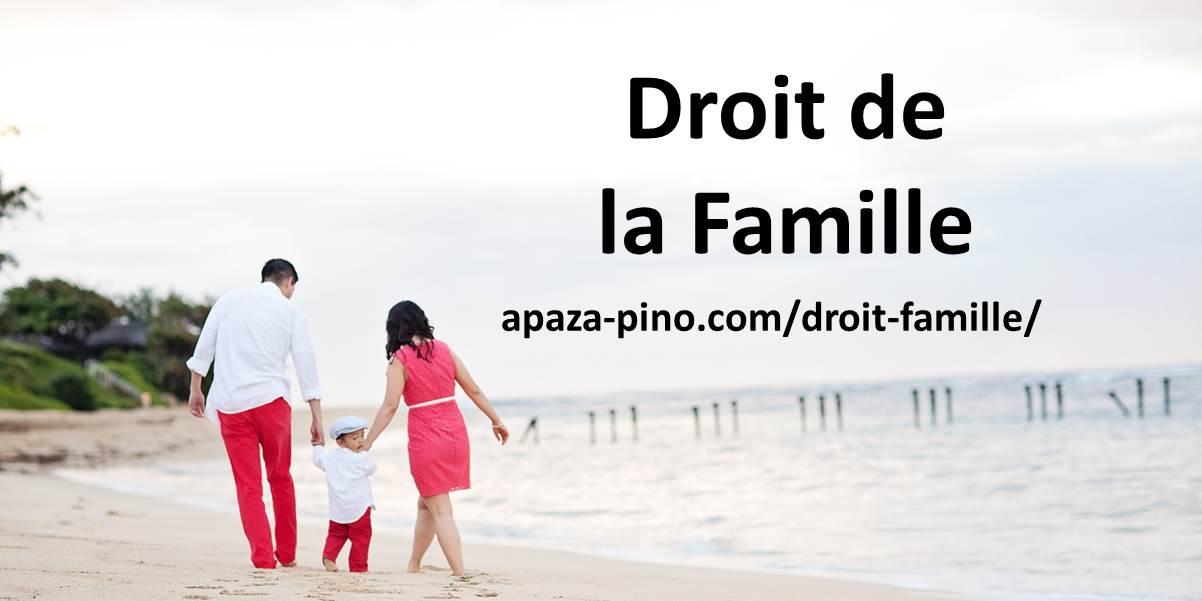Droit de la Famille APAZA PINO Avocat
