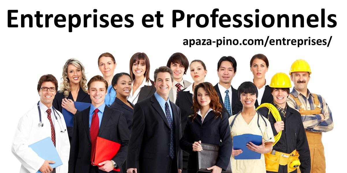 Entreprises et Professionnels APAZA PINO Avocats